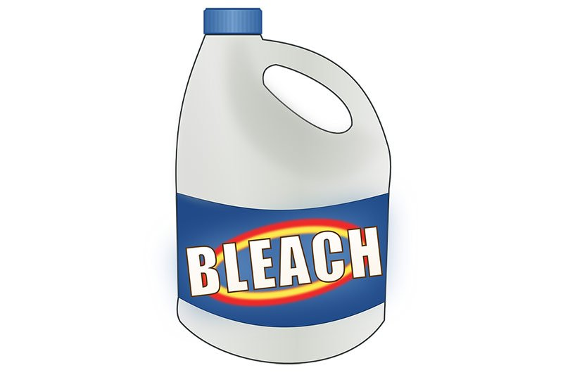 Bleach Kills Mold